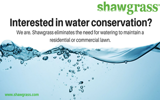 3 Simple Ways to Reduce Your Household Water Consumption